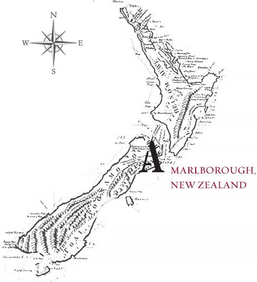 land-feature-nz-map